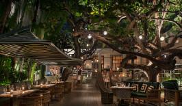 Restaurant Michael Schwartz by Night